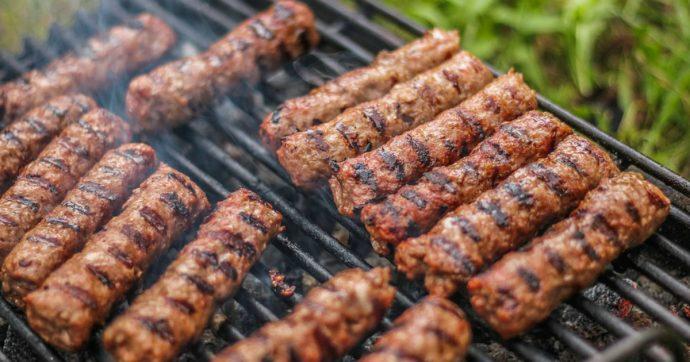 "Donna vegana fa causa ai vicini di casa: ""Troppi barbecue, c'è sempre odore di carne o pesce alla griglia"""