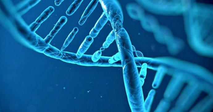 Nel genoma degli italiani scoperto un nuovo e ignoto quarto gruppo ancestrale