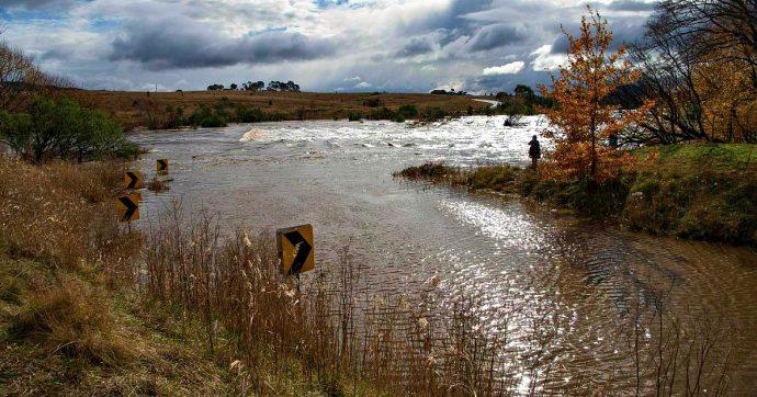 Australia, un'Arca di Noè per salvare i pesci dei fiumi dalla siccità