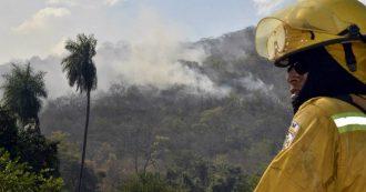 Amazzonia, deforestazione aumentata del 300% rispetto al 2018. Ucciso difensore dei diritti degli indigeni