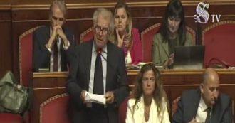 """Zanda richiama Conte. Poi il discorso su Rousseau: """"Democrazia rappresentativa o diretta? Senato eviti pericolo autoritario"""""""