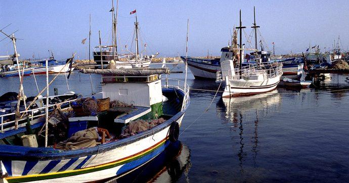 """Libia, Federpesca sospende l'accordo con società legata ad Haftar dopo le proteste di Tripoli: """"Insorte diverse sensibilità"""""""