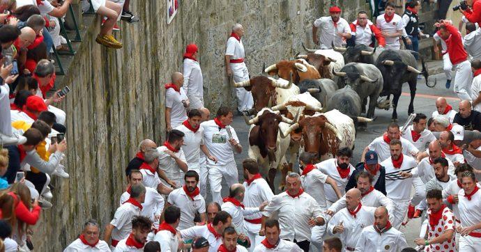 Animali, li sottoponiamo a torture indicibili. E non è il danno più grave che stiamo causando
