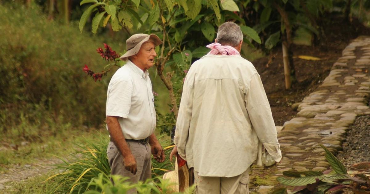 Sardegna, l'ente di ricerca in agricoltura ha bisogno di energie fresche. Ma nessuno vuole responsabilità