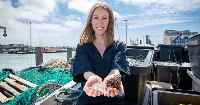 Sacchetti di plastica ecosostenibili fabbricati con pesce morto e alghe, li usereste?