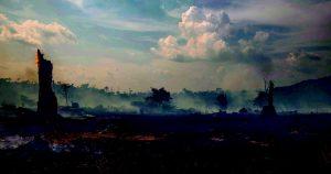 Amazzonia, l'ossessione dell'occupazione. Il piano Bolsonaro