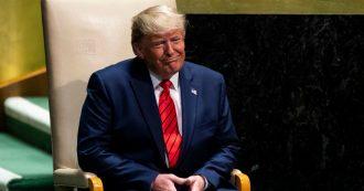 Usa, e se dietro l'impeachment contro Donald 'volpe' Trump ci fosse lo stesso Trump?
