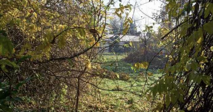 """Mantova: """"Cimitero ebraico sta per essere profanato"""". Accuse di razzismo dal direttore del comitato per la preservazione in Europa"""