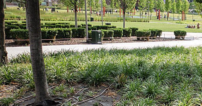 """Wwf, al via """"Urban Nature"""": più di 50 città pronte a promuovere la biodiversità in città"""