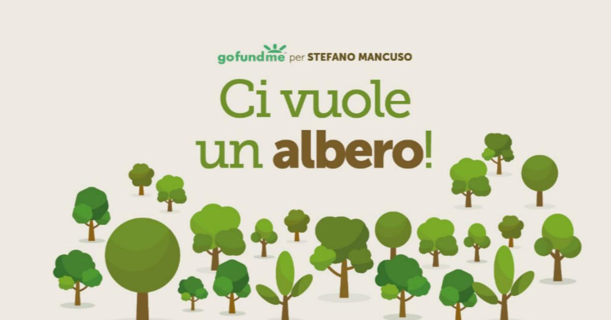 Ambiente, a Firenze una scuola 'verde' che potrebbe diventare un modello per tutti