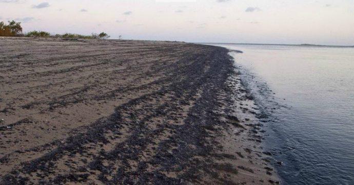 "Brasile, chiazza di petrolio inquina 139 spiagge. Bolsonaro: ""Origini in Venezuela"""