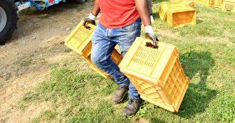 """Foggia, """"fatturava 6 milioni di euro e pagava i braccianti 5 euro all'ora"""": arrestato uno dei più grandi imprenditori agricoli della provincia"""