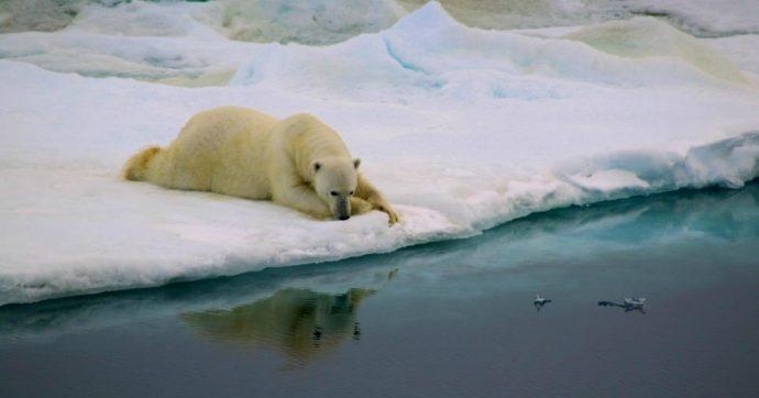 Groenlandia, scioglimento record nel 2019. E l'Europa pagherà miliardi di euro per l'innalzamento del Mediterraneo