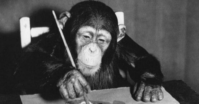 In mostra a Londra lo scimpanzé pittore apprezzato da Picasso e Dalì