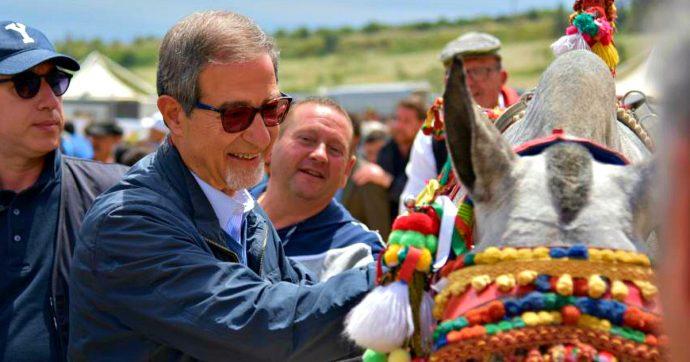 Sicilia, la Regione punta sui cavalli: il presidente Musumeci spende mezzo milione per portare l'equitazione nella sua Militello