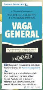 Catalogna, come funziona la piattaforma di Tsunami Democràti