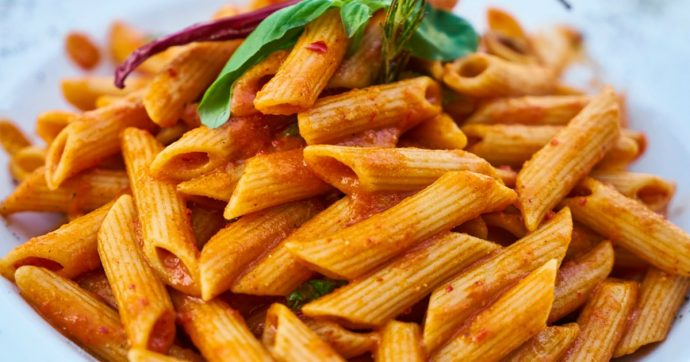 Pasta italiana contaminata da insetti: la Commissione Europea lancia l'allarme