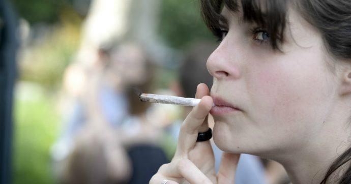 """Cannabis, l'Illinois è l'undicesimo Stato americano a legalizzare la vendita a scopi ricreativi: """"Lunghe code davanti ai rivenditori"""""""