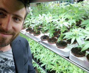 """Cannabis e legalizzazione, l'attivista Gracis: """"Serve chiare"""
