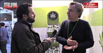 """Italiani come noi, legalizzare la cannabis? """"Va fatto subito, utile per l'economia"""". """"Ora totale incertezza, serve legge per il settore"""""""