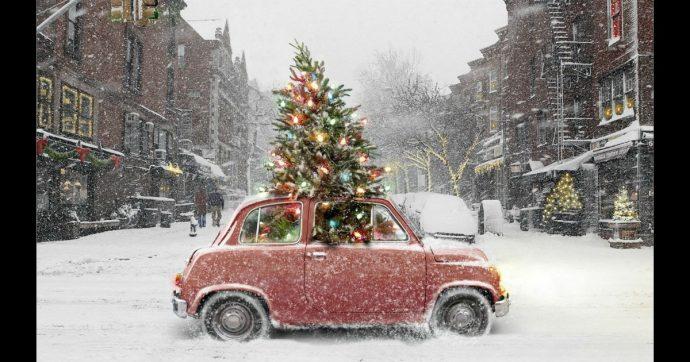 Codice della Strada, ecco come trasportare l'albero di Natale in tutta sicurezza
