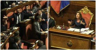 """Cannabis light, Casellati: """"Norma inammissibile"""". Scoppia la bagarre in Senato: scontro Airola-Pillon. La Russa a senatore M5s: """"Drogato"""""""