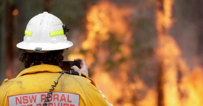 Risultati immagini per incendi australia