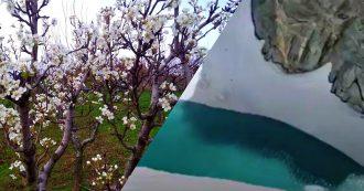 Clima: un lago nel ghiacciaio del Monte Bianco, il pero fiorito in Puglia a dicembre. Effetti (e danni) sull'Italia dell'anno più caldo per l'Europa