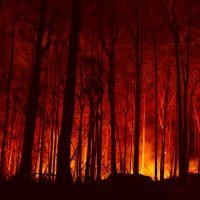 Incendi aus © Adam Dederer