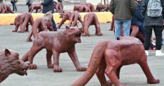 Napoli, sfregiata l'opera dell'artista Rouwang: imbrattati e spostati i lupi (da 300 chili) in piazza del Municipio
