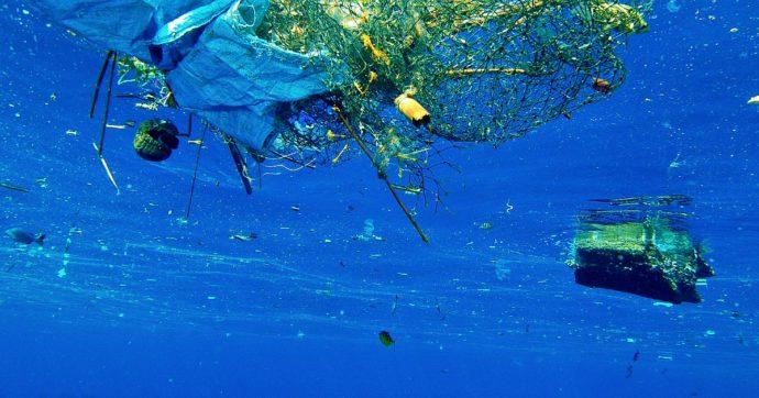 """Plastic tax, Italia Viva vuole il rinvio. L'esperto: """"È utile, in mare tanti imballaggi. Tassa sulle imprese? Lo è se pensano solo al loro mercato"""""""