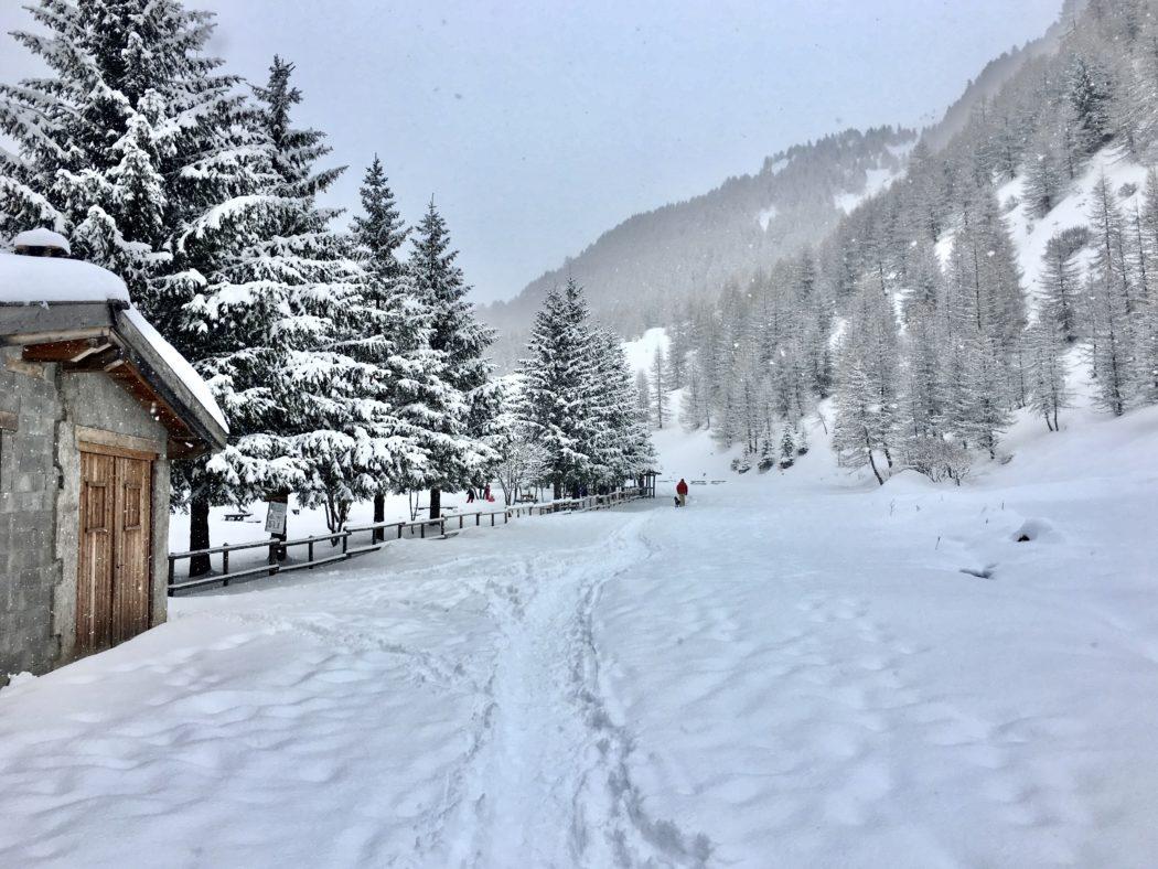 Un sentiero in Val Grande.