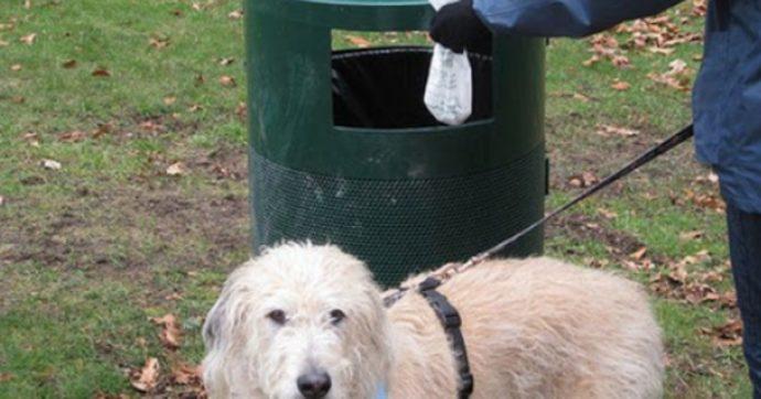 Ragazzino non raccoglie gli escrementi del suo cane. Un anziano lo vede, li recupera e fa un gesto inaspettato (no, non è Lercio)