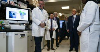 """Coronavirus in Usa, dai tamponi che mancano ai costi sanitari per chi non è assicurato. Ma per Trump """"è la nuova truffa dei democratici"""""""