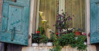 """Coronavirus, """"La natura non si ferma"""": tutte le iniziative del Wwf per riscoprire l'ecologia da casa, in cucina e sul balcone"""