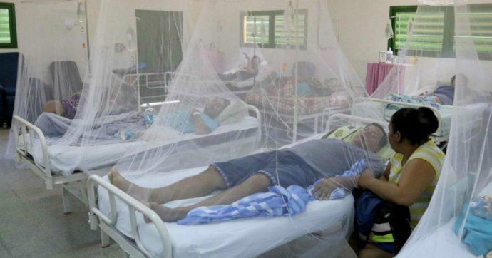"""America Latina, non solo coronavirus: """"In corso la peggiore epidemia di dengue nella storia del continente"""""""