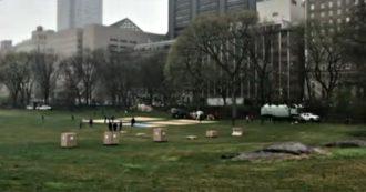 Coronavirus, a New York allestito ospedale da campo a Central Park: la struttura sarà riservata a malati Covid