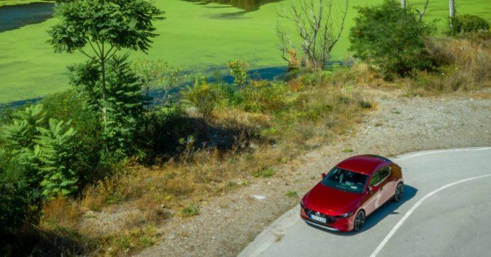 """Mazda punta sui biocarburanti: """"Con le microalghe impatto ambientale molto basso"""""""