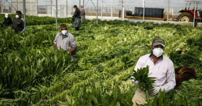 Lavoratori stranieri, una sanatoria generalizzata è necessaria e urgente