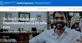 """Dl liquidità, """"lunedì o martedì"""" in arrivo i prestiti fino a 25mila euro con garanzia pubblica alle imprese che li hanno chiesti"""