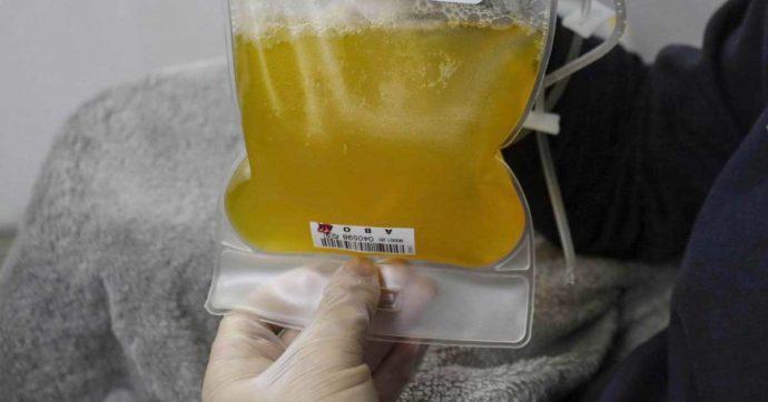 Coronavirus, la Ast di Mantova avvia la sperimentazione con il plasma iperimmune sui malati Covid delle Rsa