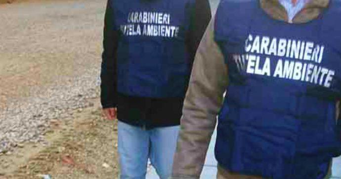 """Trentino, """"discarica abusiva a Mezzocorona"""". Otto indagati: i vertici della Adige Bitumi, un ex dirigente provinciale e il sindaco Hauser"""