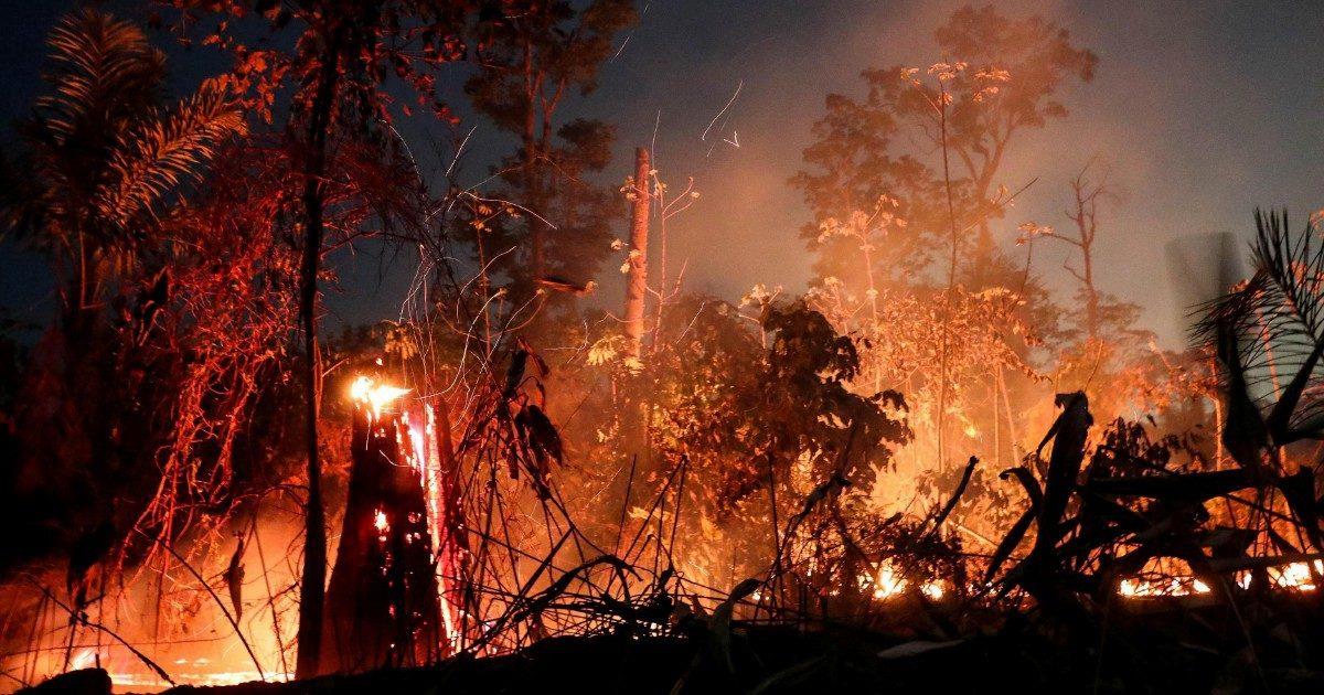 Amazzonia in fiamme per la crisi da Covid