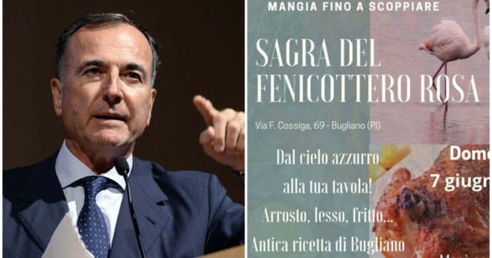 """L'epic fail social dell'ex ministro Franco Frattini con l'account del Comune di Bugliano che ora vuole dargli la cittadinanza onoraria. """"Mangiano i fenicotteri rosa, imbecilli"""""""