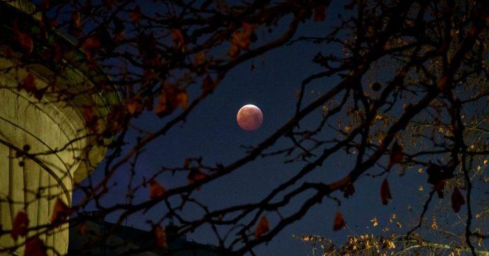 Eclissi, nel cielo di giugno due eventi con Luna e Sole. Come osservarle (anche in remoto)