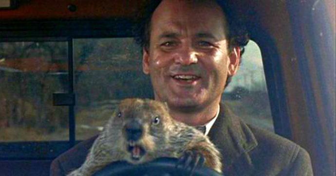 Il Giorno della Marmotta, la commedia citata da Beppe Grillo in cui Bill Murray rivive sempre lo stesso giorno