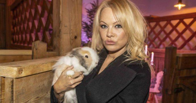 """Aleksandr Kokorin, le rivelazioni hot su Pamela Anderson: """"Rami ci ha detto che con lei lo faceva 12 volte a notte"""""""