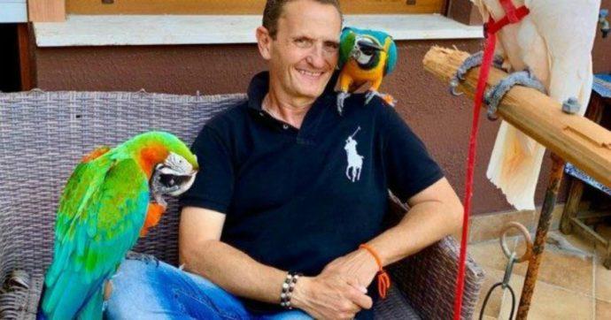 """Enzo Salvi picchiato assieme al suo pappagallo: """"È arrivato alle mie spalle e mi ha preso a calci"""""""