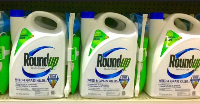 Monsanto, Bayer patteggia sul glifosato: ora l'Europa non può più far finta di niente