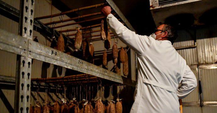 """Etichette sui salumi per indicare provenienza delle carni: ok dell'Ue al decreto italiano. Coldiretti: """"Sostegno ad allevamenti nazionali"""""""